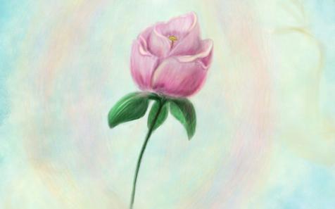 Цветок Матери Мира