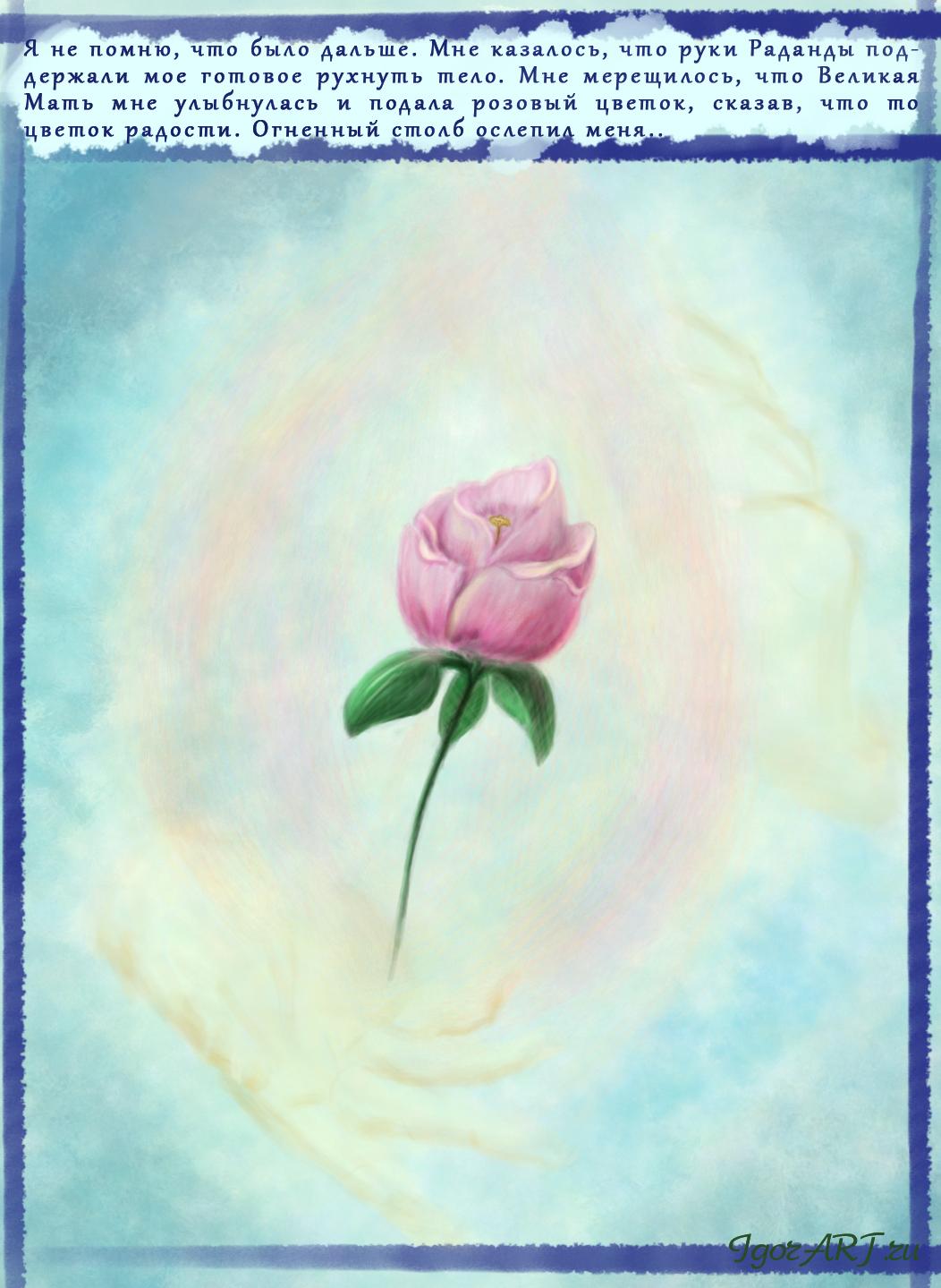 Цветок Матери Мира, февраль 2015